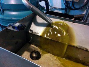 huile-olive-vierge-fabrication-benameji-11