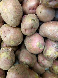 fruits-et-legumes-7