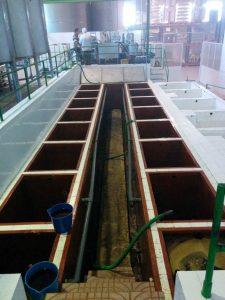 huile-olive-vierge-fabrication-benameji-9